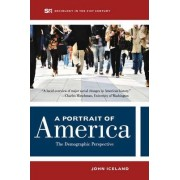 A Portrait of America by John Iceland