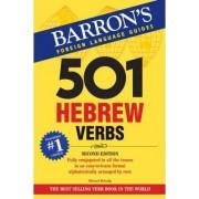 501 Hebrew Verbs by Shmuel Bolozky