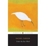 Under the Sea-wind by Rachel Carson