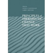 Principles of Therapeutic Change That Work by Louis G. Castonguay