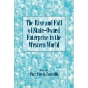 The Rise and Fall of State-Owned Enterprise in the Western World by Pier Angelo Toninelli