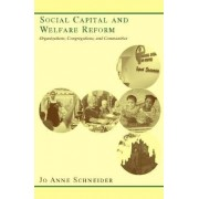 Social Capital and Welfare Reform by Jo Anne Schneider