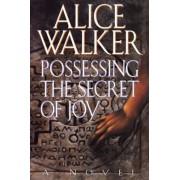 Possessing the Secret of Joy. by Alice Walker