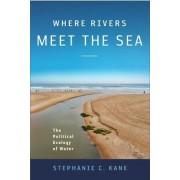 Where Rivers Meet the Sea by Stephanie Kane