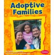 Adoptive Families by Sarah L Schuette