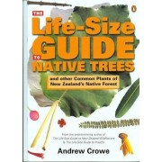 The Life Size Guide to Native Trees & Other Common Plants of New Zealand by Andrew Crowe