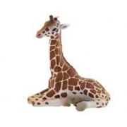 Pui De Girafa