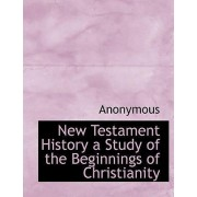 New Testament History a Study of the Beginnings of Christianity by Anonymous