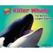 Killer Whale by Natalie Lunis