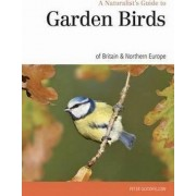 Naturalst's Guide to the Garden Birds of Britain & Northern Europe by Head of Human Molecular Genetics Laboratory Peter Goodfellow