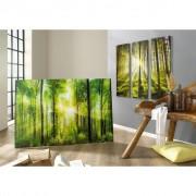 XXXL Shop GLASBILD, Mehrfarbig, Glas, 80x120 cm