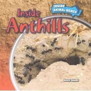 Inside Anthills by Henry Abbott