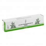 BIOCHEMIE 5 Kalium phosphoricum D 6 Creme 100 Milliliter