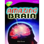 Oxford Reading Tree: Level 10A: TreeTops More Non-Fiction: Amazing Brain by Mick Gowar