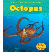 Octopus by Louise Spilsbury