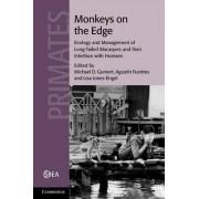 Monkeys on the Edge by Michael D. Gumert