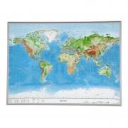 Georelief Harta lumii magnetica, 3D Reliefkarte