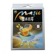 Magical Pass-thru Coin Box (Charming Party Magic Set)