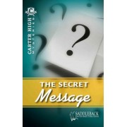 The Secret Message by Eleanor Robins