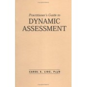 Practitioner's Guide to Dynamic Assessment by Carol Schneider Lidz