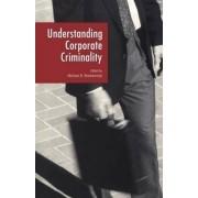 Understanding Corporate Criminality by Michael B. Blankenship