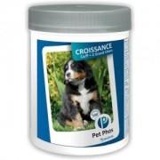 Pet Phos CROISSANCE GRAND CHIEN 100 cp