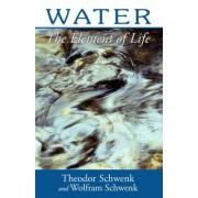 Water by Theodor Schwenk