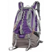 Vanguard Kinray 48 (violet)