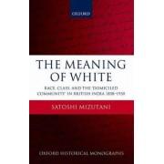 The Meaning of White by Satoshi Mizutani