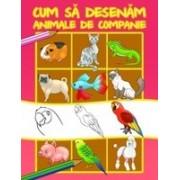 CUM SA DESENAM ANIMALE DE COMPANIE