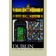 Dublin by Siobhan Marie Kilfeather