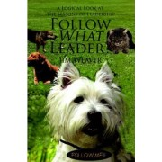 Follow What Leader? by MR Jim Weaver