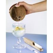 Deschizator pentru nuci de cocos