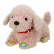The retriever teacher talking! Let's start with the doggy (japan import)