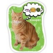 Joc de carti - Adopta o pisicuta