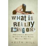 What Is Really Going On? by Keith Hill