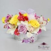 Cutie flori Happiness CTF013