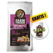 Farm Fresh Fish Sensitive Large Breed GF 15 + 1,8kg GRATIS