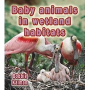 Baby Animals in Wetland Habitats by Bobbie Kalman