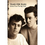 Tears for Fears - Scenes From the Big Chair (0602498288047) (1 DVD)