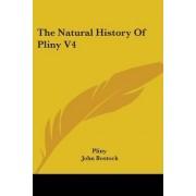 The Natural History of Pliny V4 by Pliny