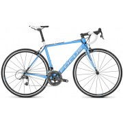 Bicicleta semicursiera Focus Cayo Team replica Force 22G
