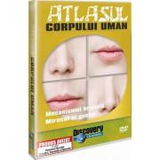 Discovery - Atlasul corpului uman:Mecanismul hranirii-Gustul si mirosul (DVD)