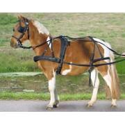 Star Nylonový poprsní postroj STAR - Pony a Shetty | Jezdecké potřeby pro anglii i western AuraSHOP | PONY