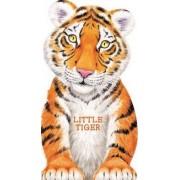 Little Tiger by L Rigo