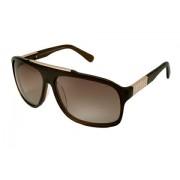 Diluca Eyewear Sunglasses Ceres Brown LBR004