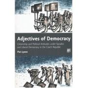 Adjectives of Democracy(Pat Lyons )