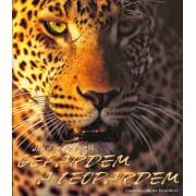 Jaké je to být Gepardem a Leopardem()