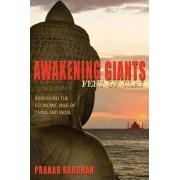 Awakening Giants, Feet of Clay by Pranab Bardhan