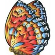 Little Butterfly by Happy Books
